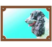 Barevná cedulka Pozor pes Anglický kokr čb