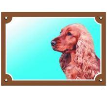 Barevná cedulka Pozor pes Anglický kokr zlatý