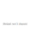 Acana Heritage Senior 11,4kg
