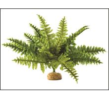 Rostlina EXO TERRA Boston Fern střední 1ks