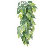 Plastová rostlina 20x30 cm FICUS